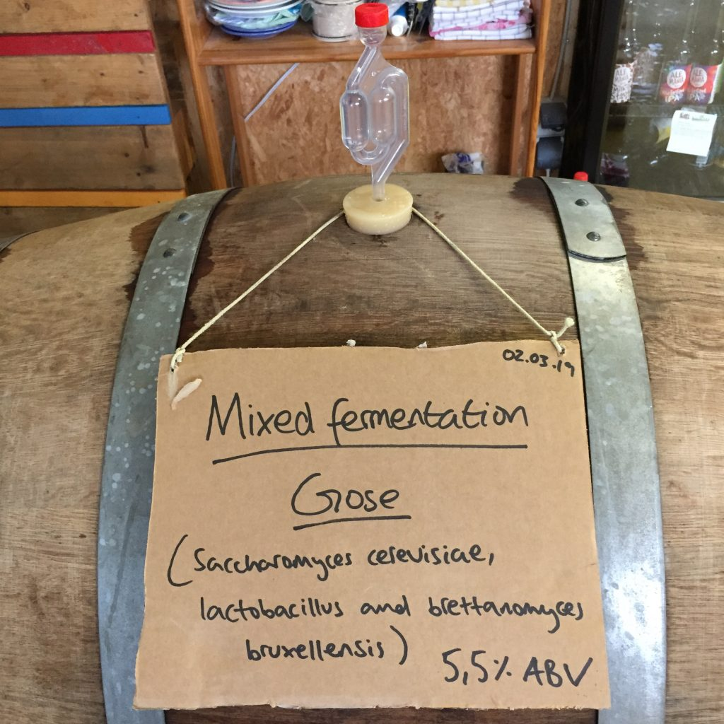 Mixed Fermentation Gose